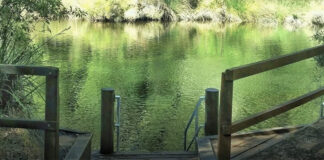 Discover Long Pool in Collie