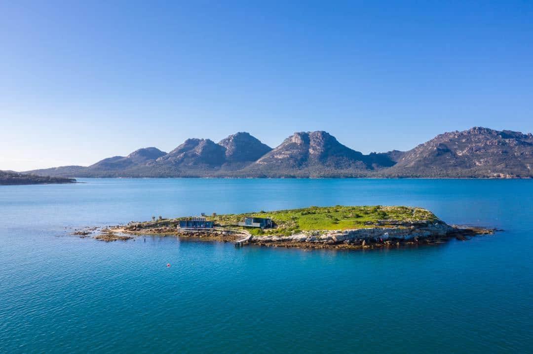 Penguin Paradise: Tasmania's Private Island Escape