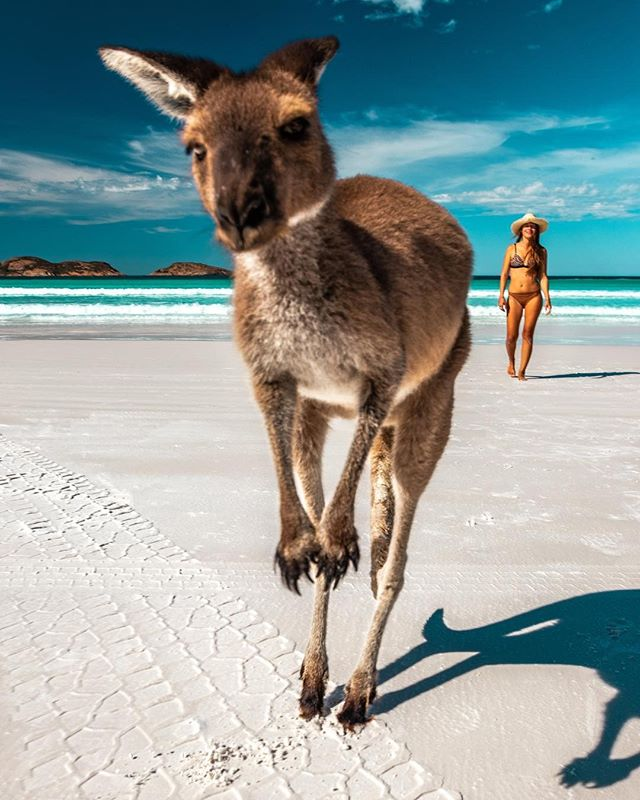 Lucky Bay Esperance Instagram hot spot
