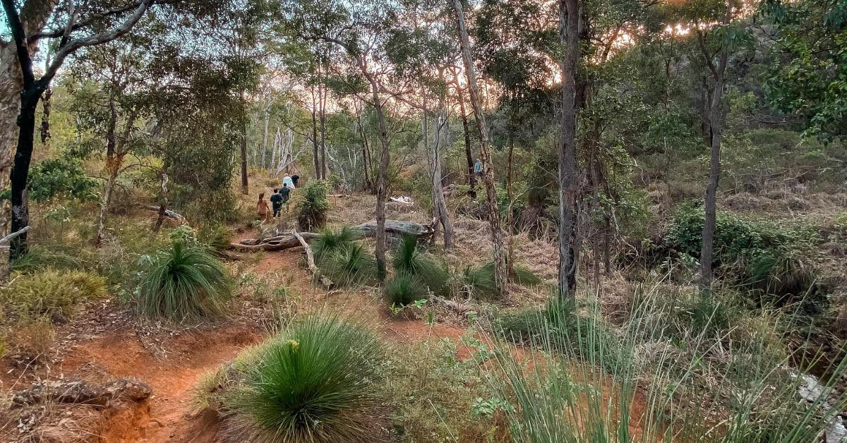 Perth's Best Walking Trails For Kids