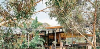 treehouse retreat- swan valley