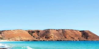 quobba station- wa towns